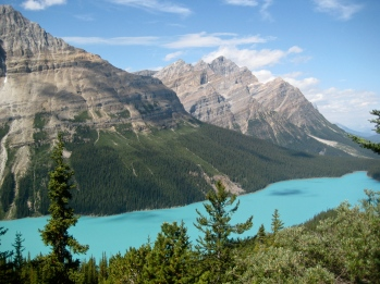 Peyto Lake; yes, it's that color...