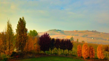 View from our room, Cascina Barac
