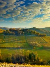 Countryside near Alba