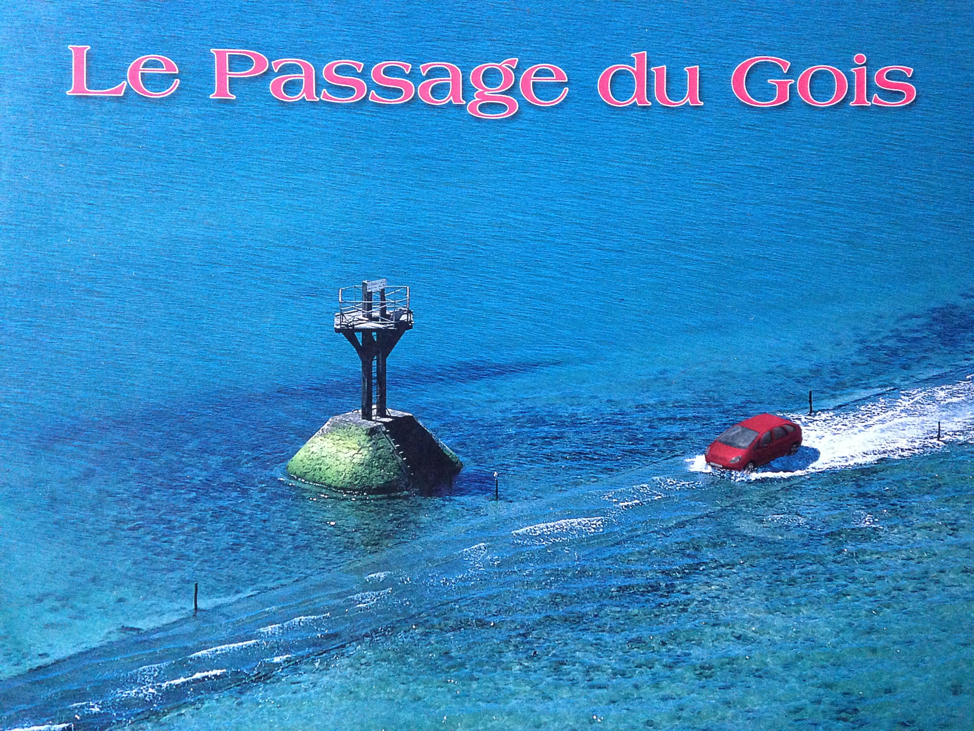 Le Gois Flojohn Travels
